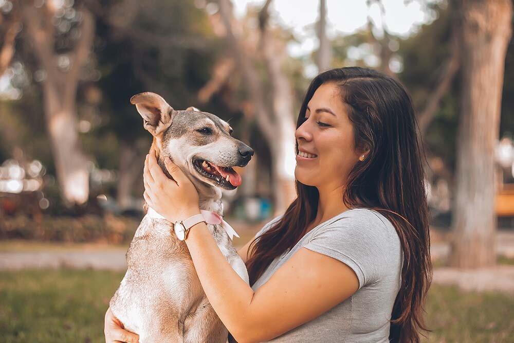 Pet Adoption Volunteer
